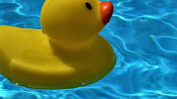 Renovation piscine Yonne 89
